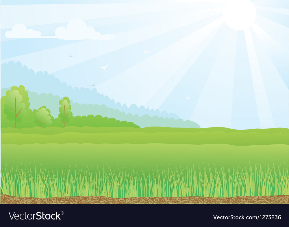 Green field with sunshine rays vector | Price: 1 Credit (USD $1)