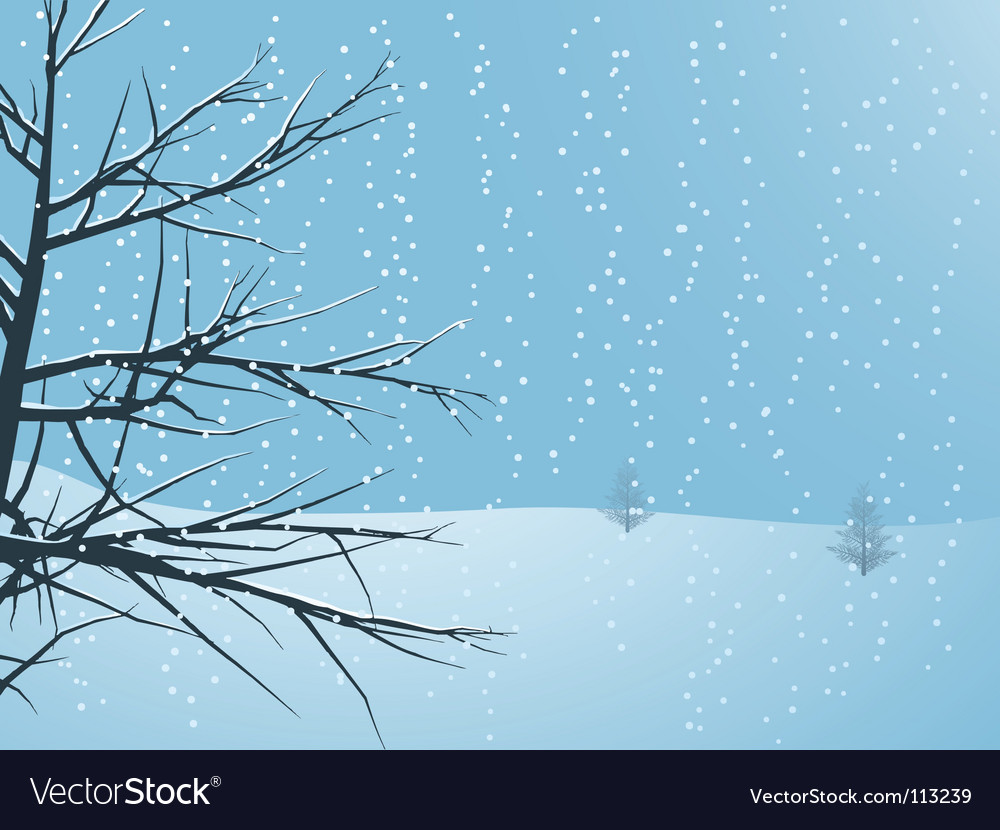 Snowy winter tree vector | Price: 1 Credit (USD $1)