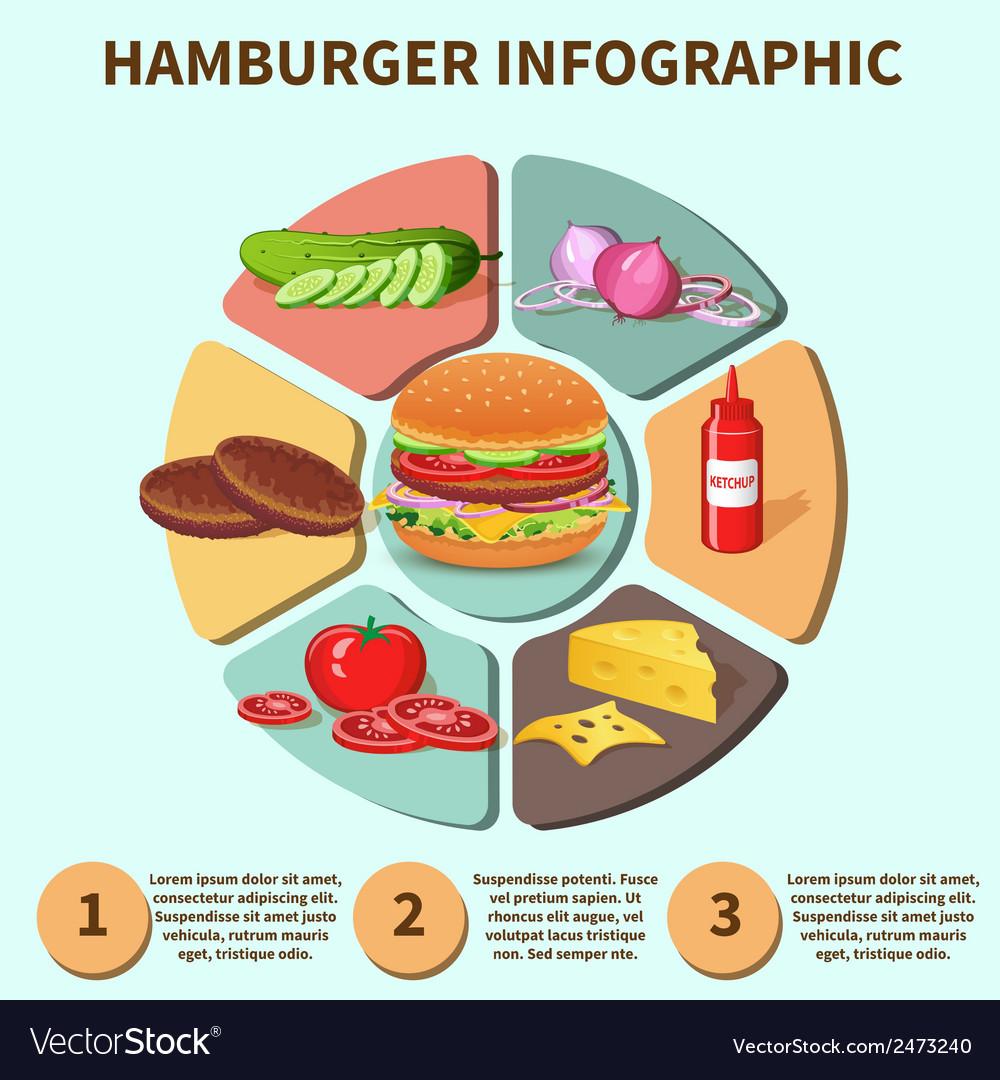 Hamburger sandwich infographic vector   Price: 1 Credit (USD $1)