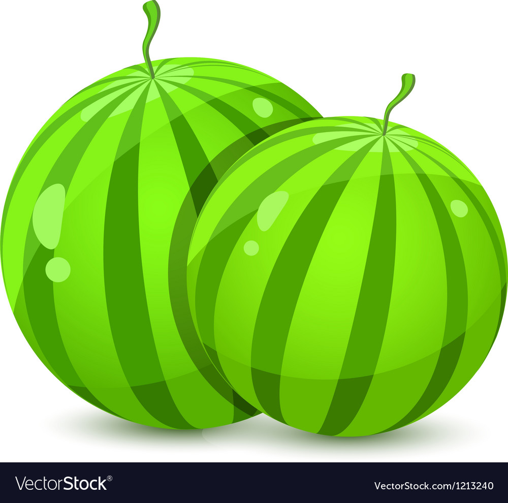 Two juicy whole watermelons vector | Price: 1 Credit (USD $1)