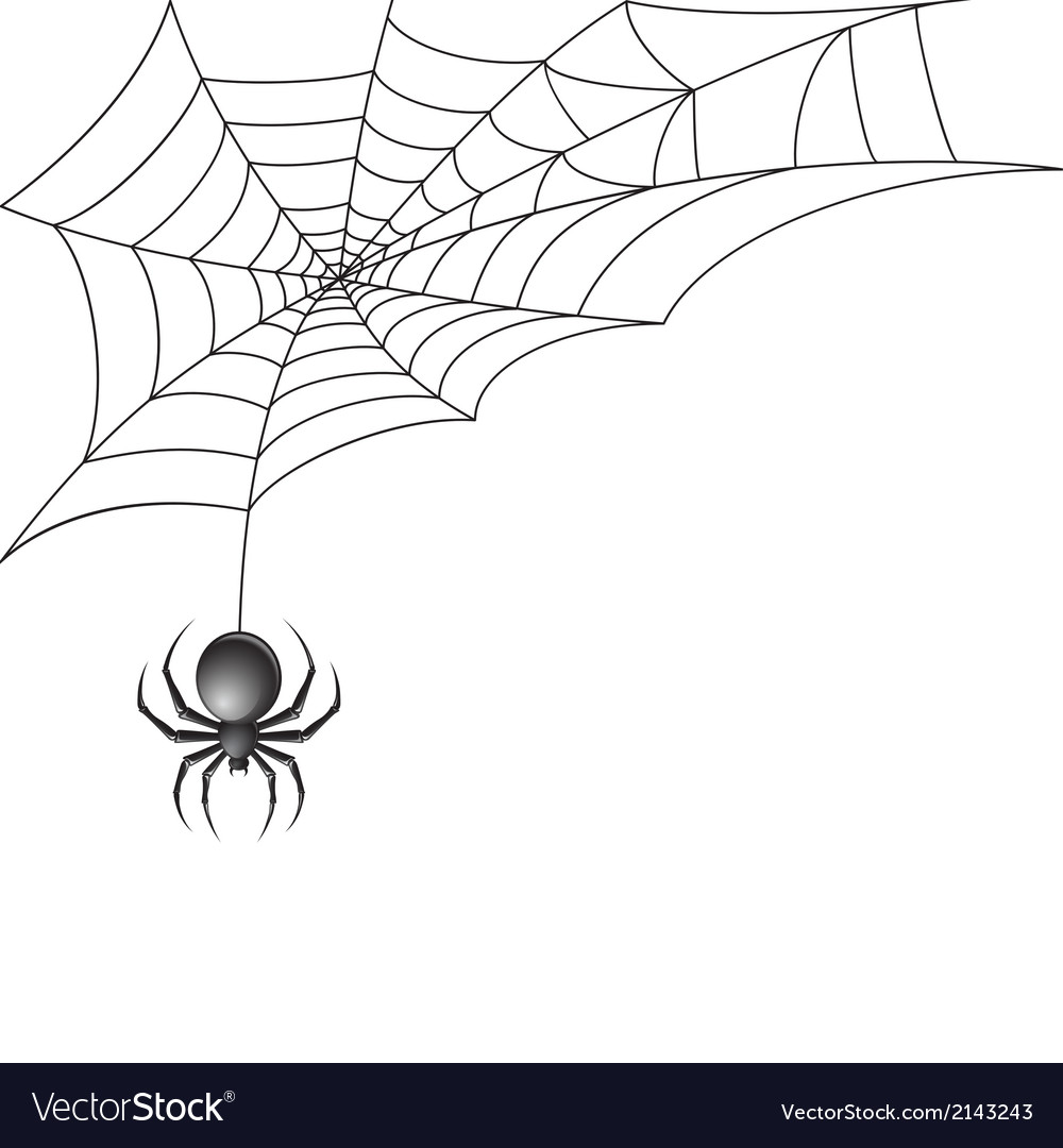 Black spider with web background vector | Price: 1 Credit (USD $1)