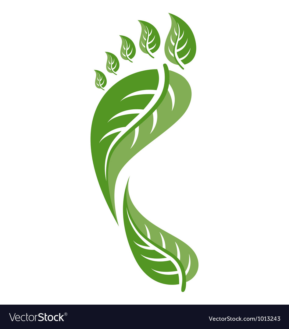 Footprint leaf vector