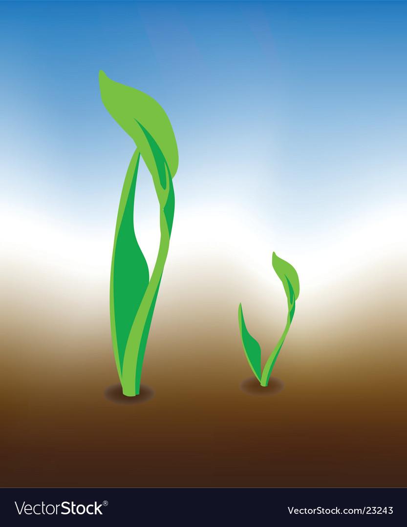 Growth design vector | Price: 1 Credit (USD $1)