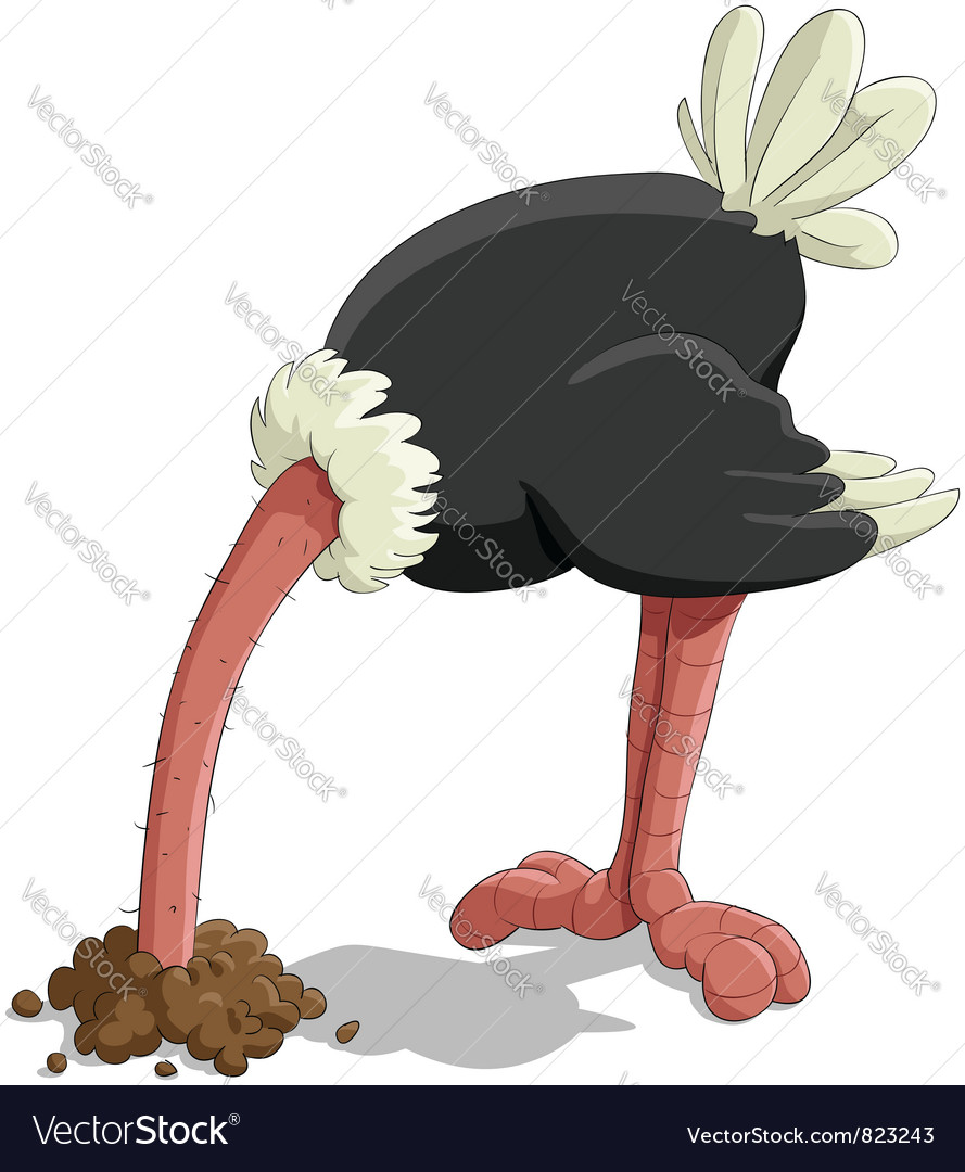 Ostrich vector | Price: 3 Credit (USD $3)