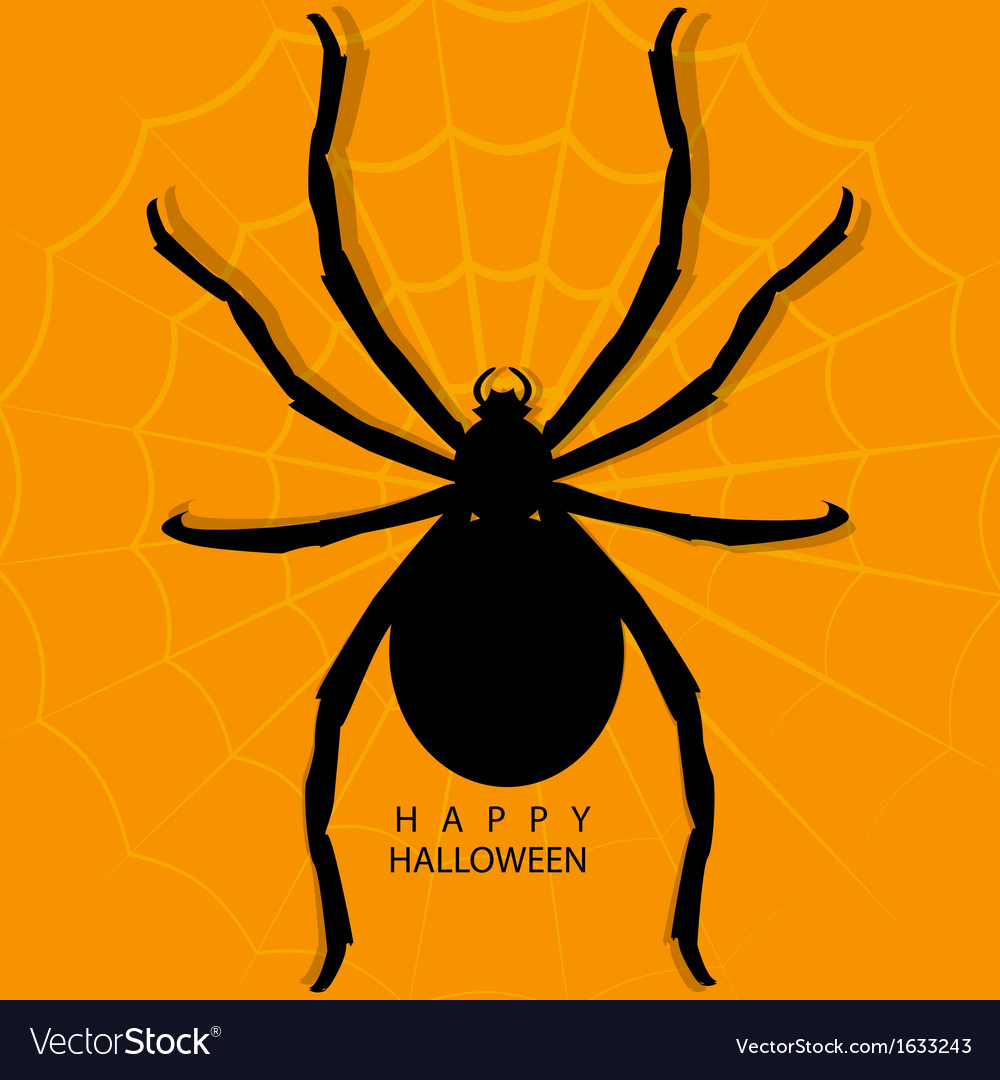 Spider on web for halloween background vector | Price: 1 Credit (USD $1)
