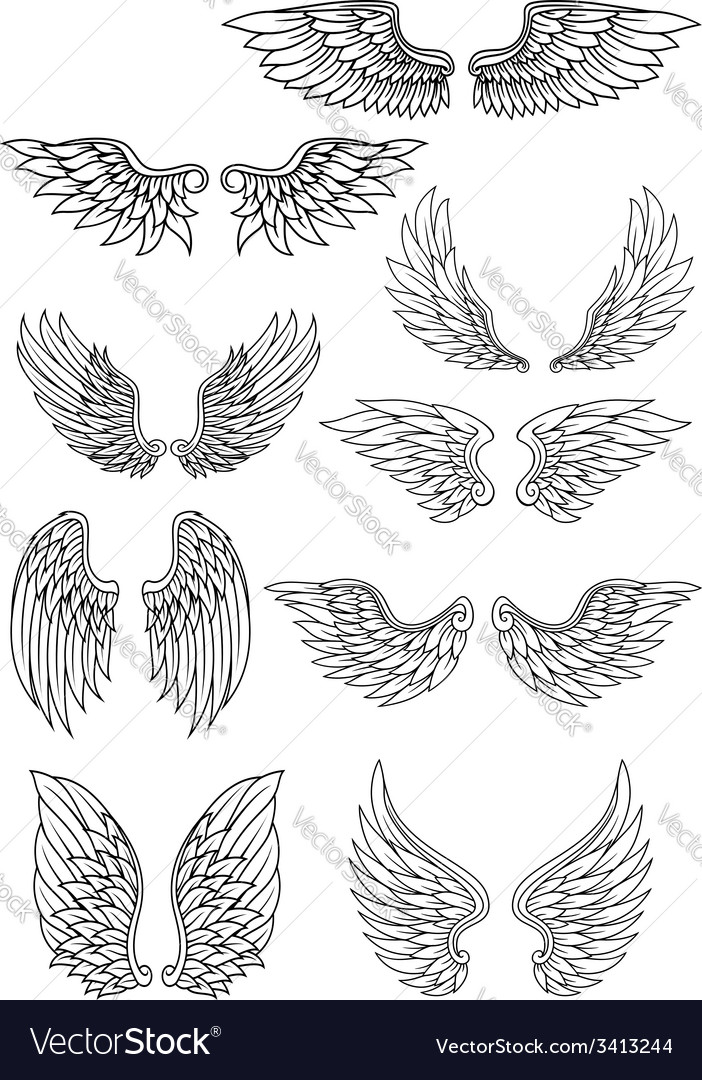 Set of outline heraldic wings vector | Price: 1 Credit (USD $1)