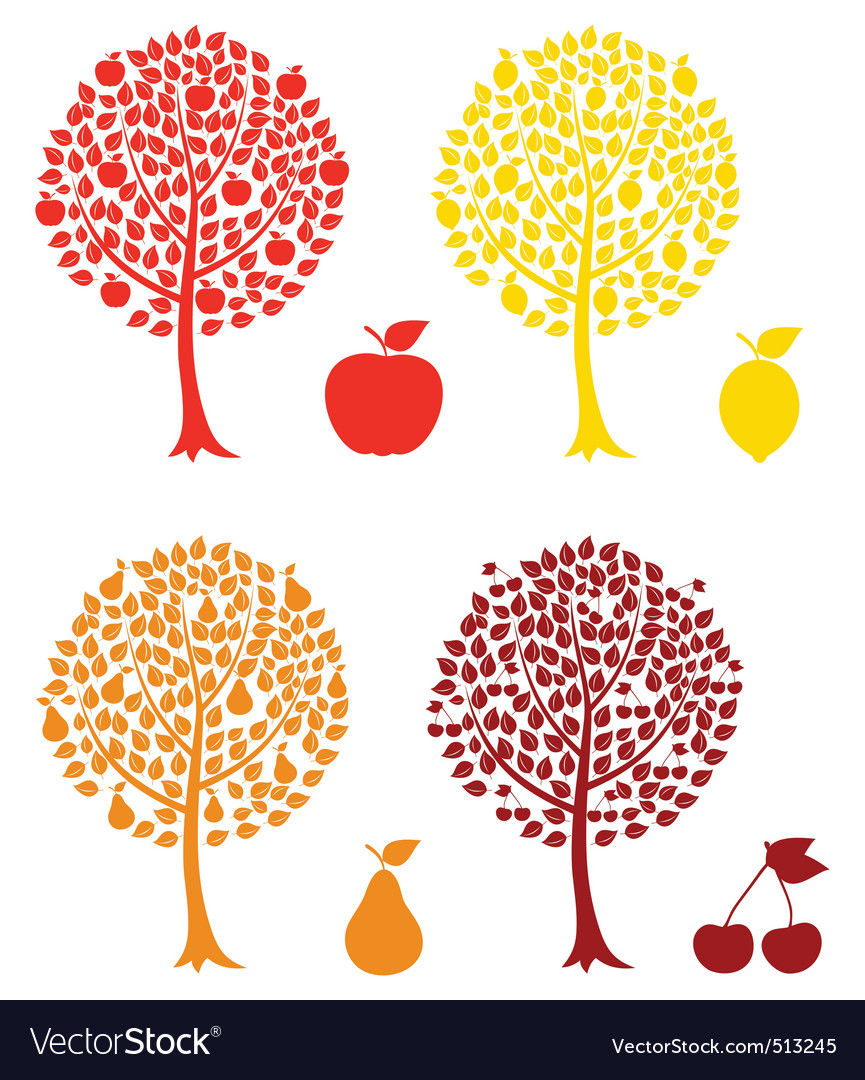 Fruit tree vector | Price: 1 Credit (USD $1)