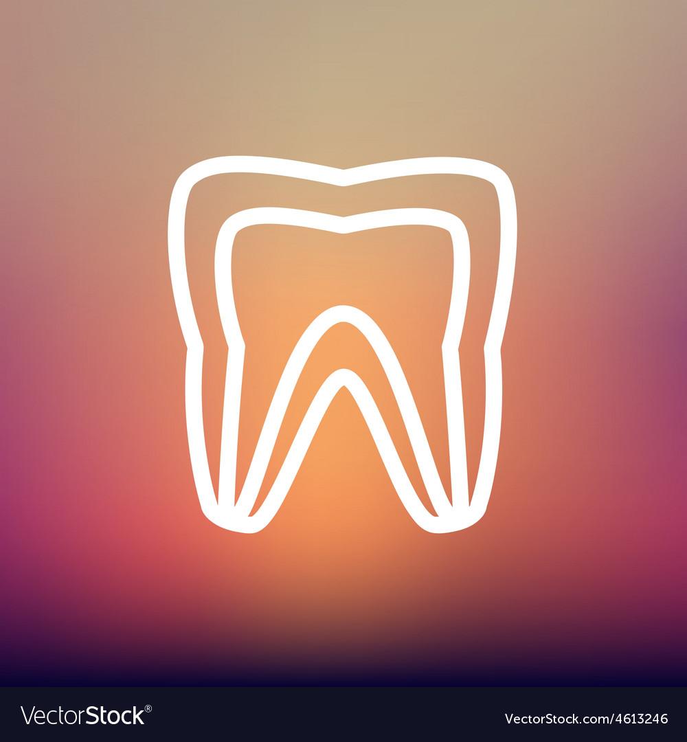 Molar tooth thin line icon vector | Price: 1 Credit (USD $1)