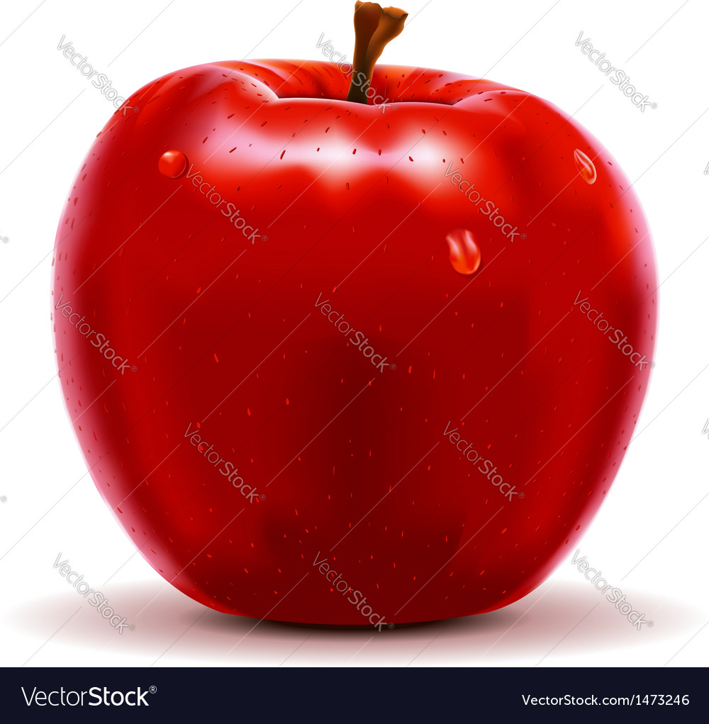 Red apple isolated on white vector | Price: 1 Credit (USD $1)