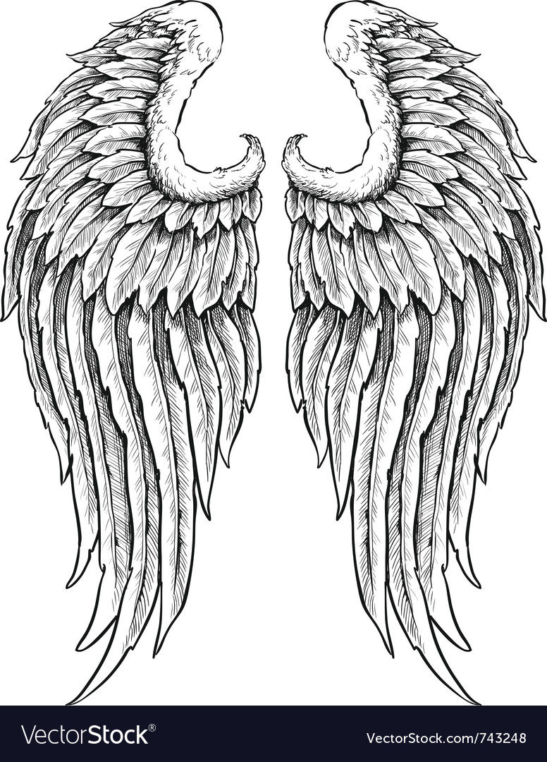 Hand drawn angel wings vector | Price: 1 Credit (USD $1)