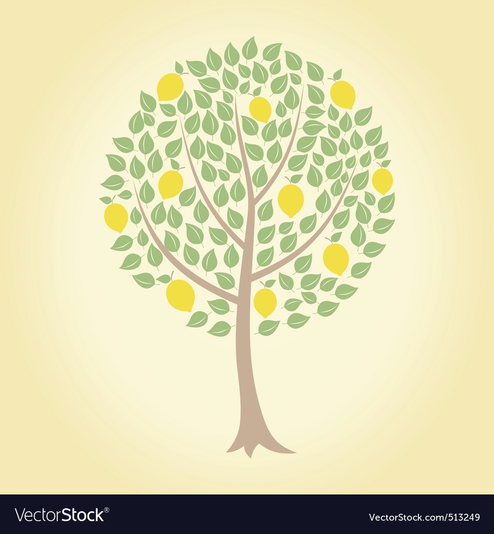 Lemon tree vector | Price: 1 Credit (USD $1)