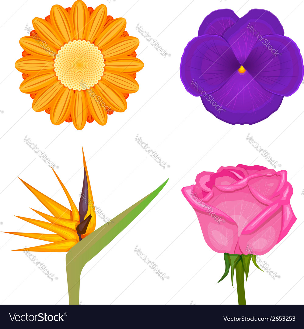 Solid colors flowers set vector | Price: 1 Credit (USD $1)