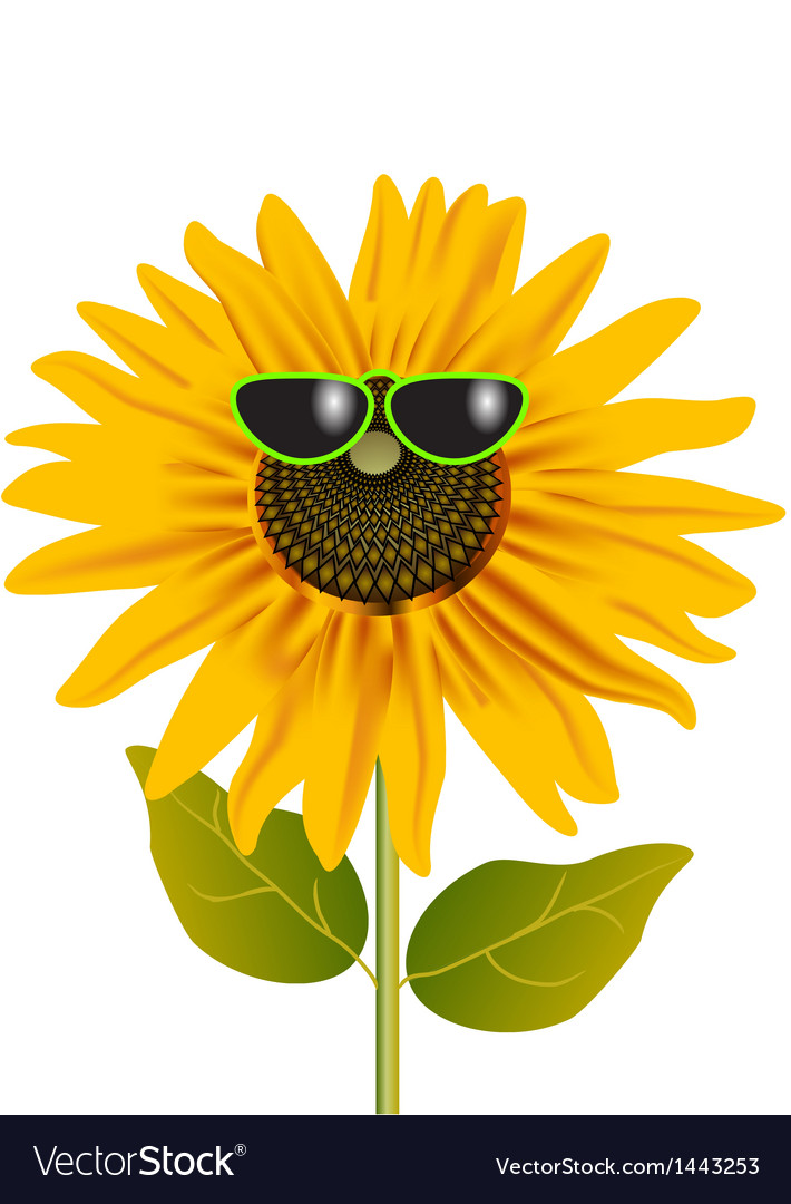 Sunflower in glasses vector | Price: 1 Credit (USD $1)