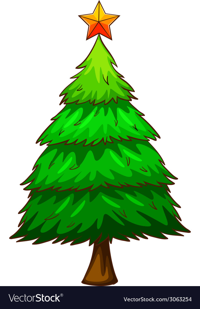 A coloured sketch of a pine tree vector | Price: 1 Credit (USD $1)