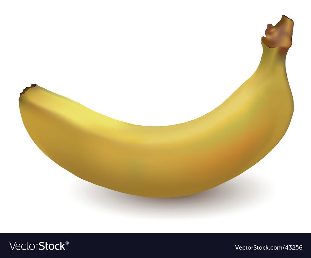 Banana vector   Price: 1 Credit (USD $1)