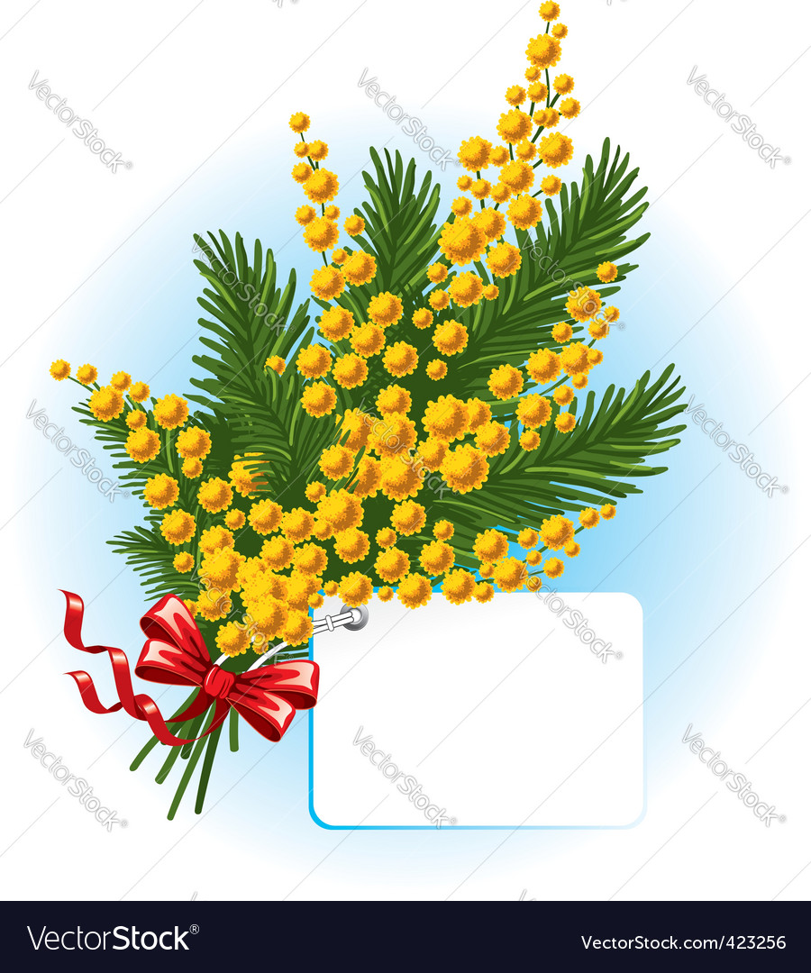 Bouquet of mimosa and forgetmenot vector | Price: 1 Credit (USD $1)