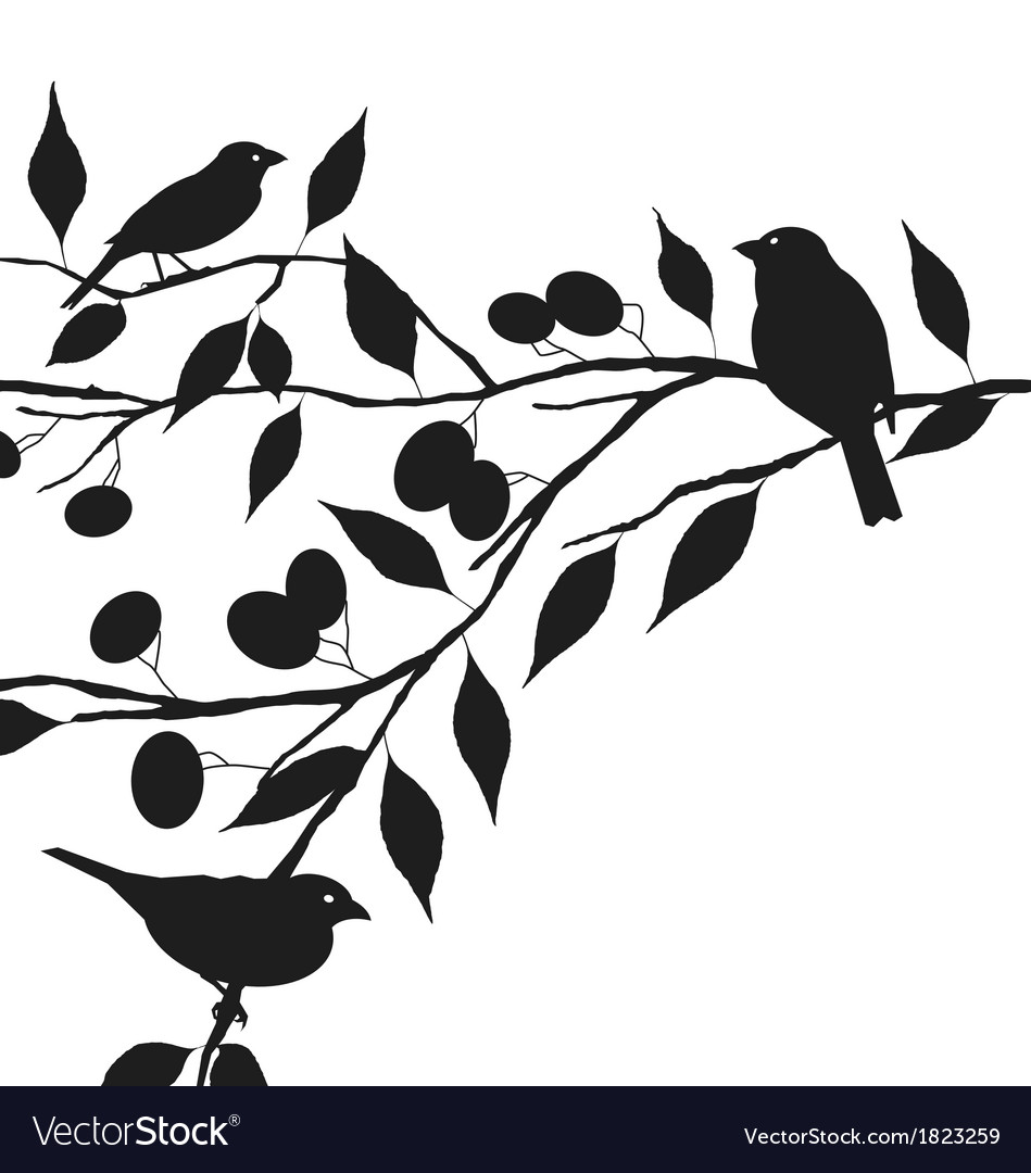 Birds on tree branch vector | Price: 1 Credit (USD $1)