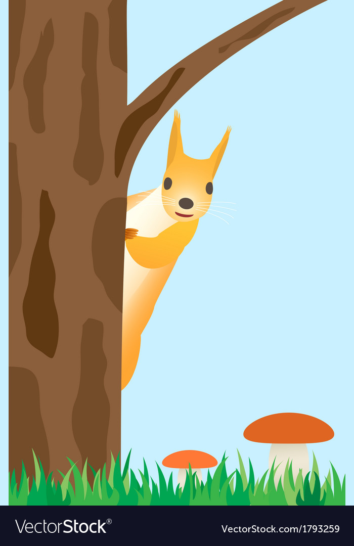 Squirrel on the tree vector | Price: 3 Credit (USD $3)