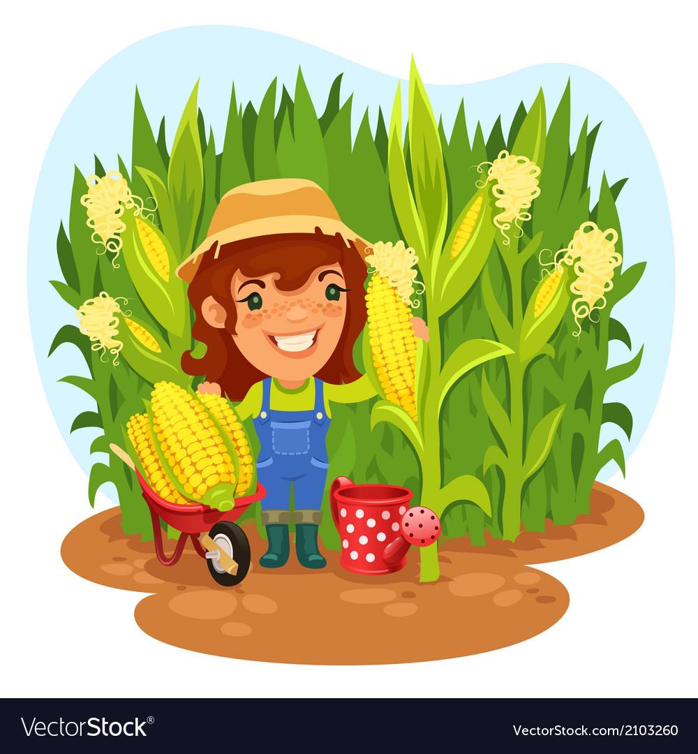 Female farmer in a cornfield vector | Price: 3 Credit (USD $3)