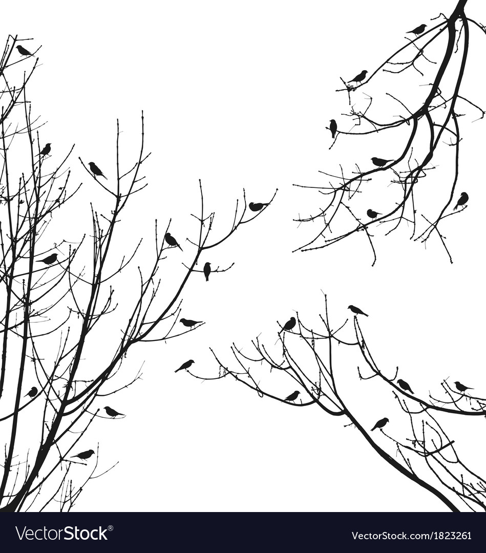 Birds on tree branches vector | Price: 1 Credit (USD $1)