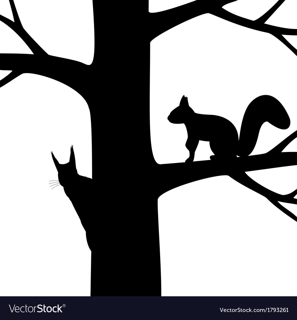 Silhouette two squirrel on the tree vector | Price: 3 Credit (USD $3)