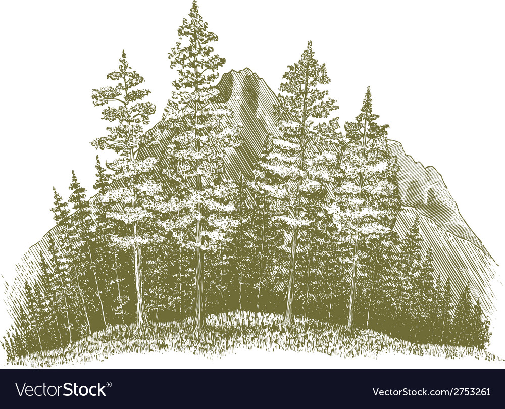 Woodcut mountain drawing vector | Price: 1 Credit (USD $1)