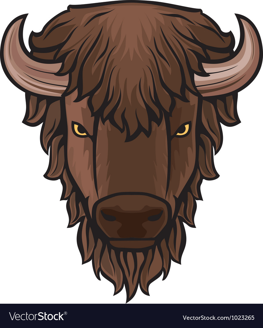 Buffalo head vector | Price: 1 Credit (USD $1)