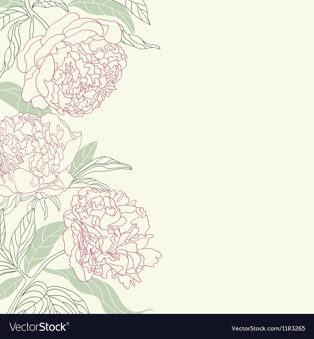 Hand drawing tenderness peony flowers frame vector | Price: 1 Credit (USD $1)