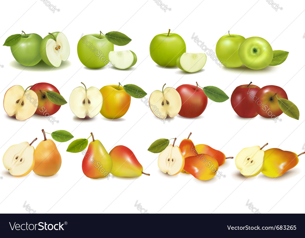 Set of red and green fruits vector | Price: 3 Credit (USD $3)