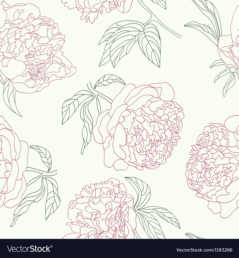 Hand drawing tenderness peony flowers beautiful vector | Price: 1 Credit (USD $1)