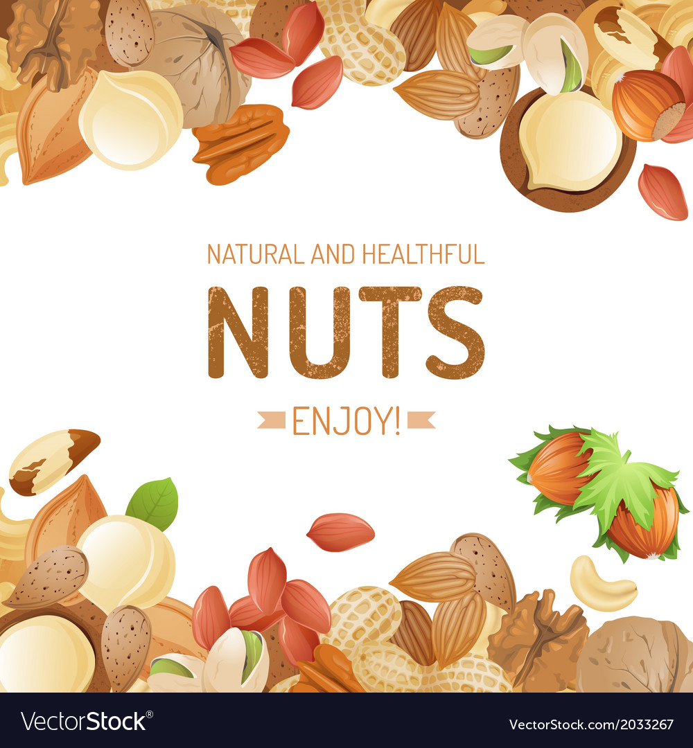 Bright background with different nuts vector | Price: 1 Credit (USD $1)