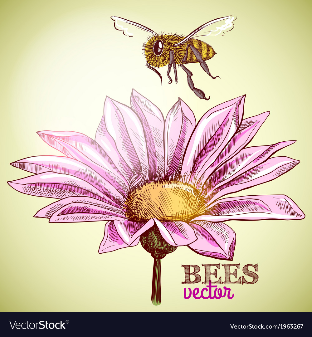 Flying honey bee and blossoming flower background vector | Price: 1 Credit (USD $1)