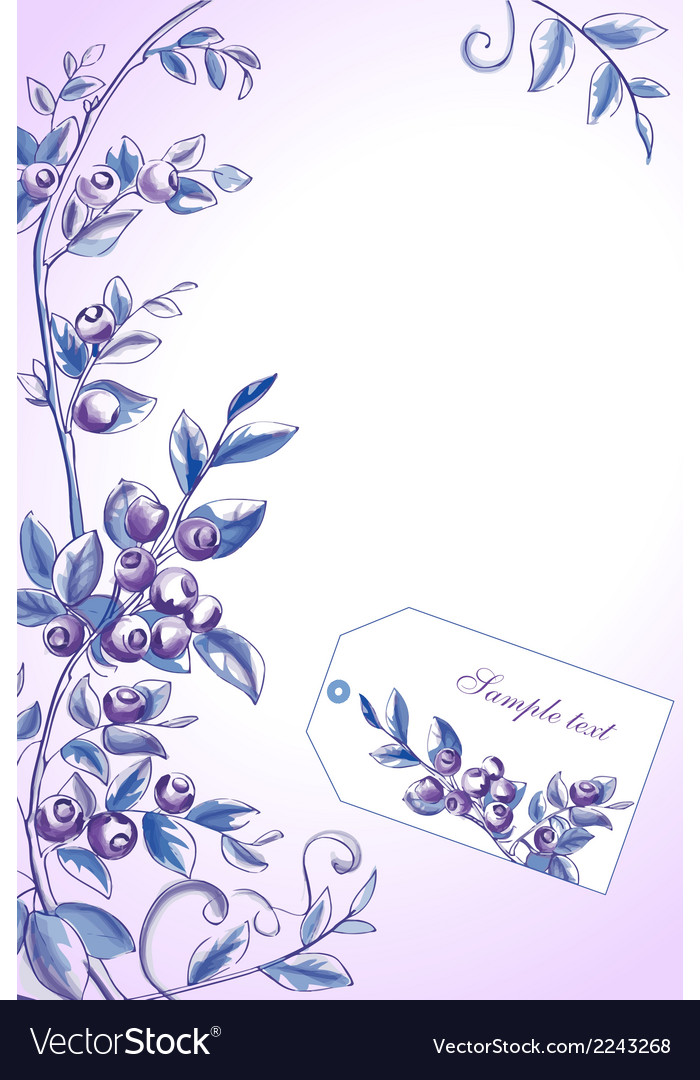 Blueberry frame vector | Price: 1 Credit (USD $1)