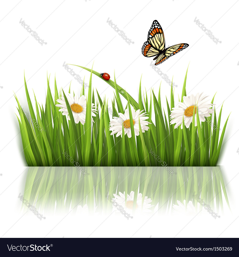 Nature grass background vector | Price: 1 Credit (USD $1)
