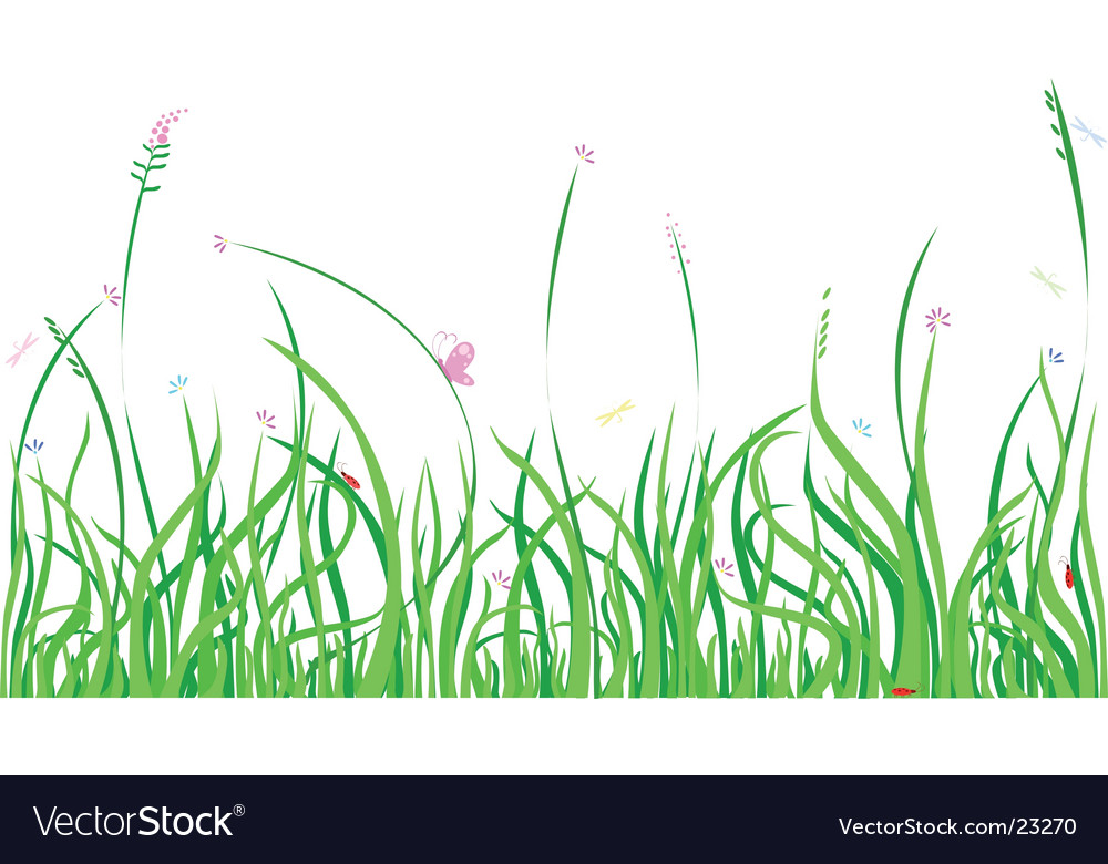 Summer grass vector | Price: 1 Credit (USD $1)