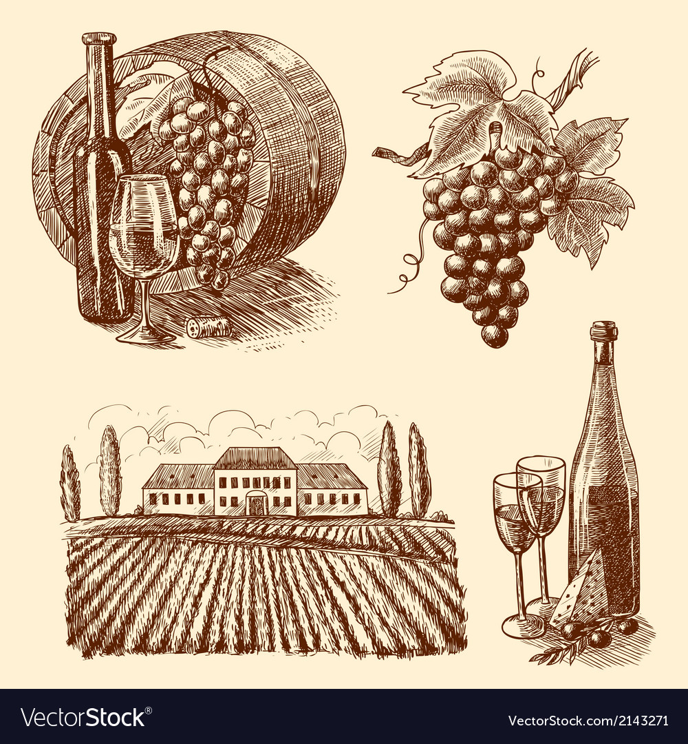 Wine sketch decorative set vector | Price: 1 Credit (USD $1)