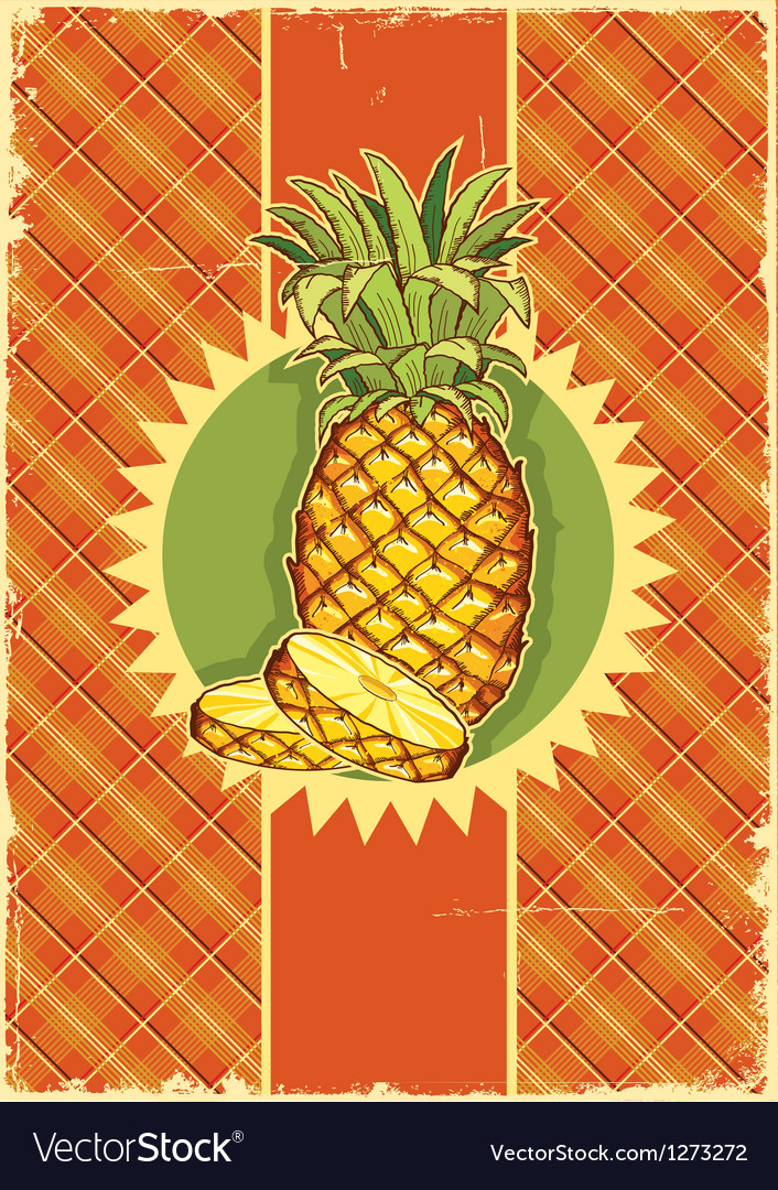 Pineapple fruit on vintage vector | Price: 3 Credit (USD $3)