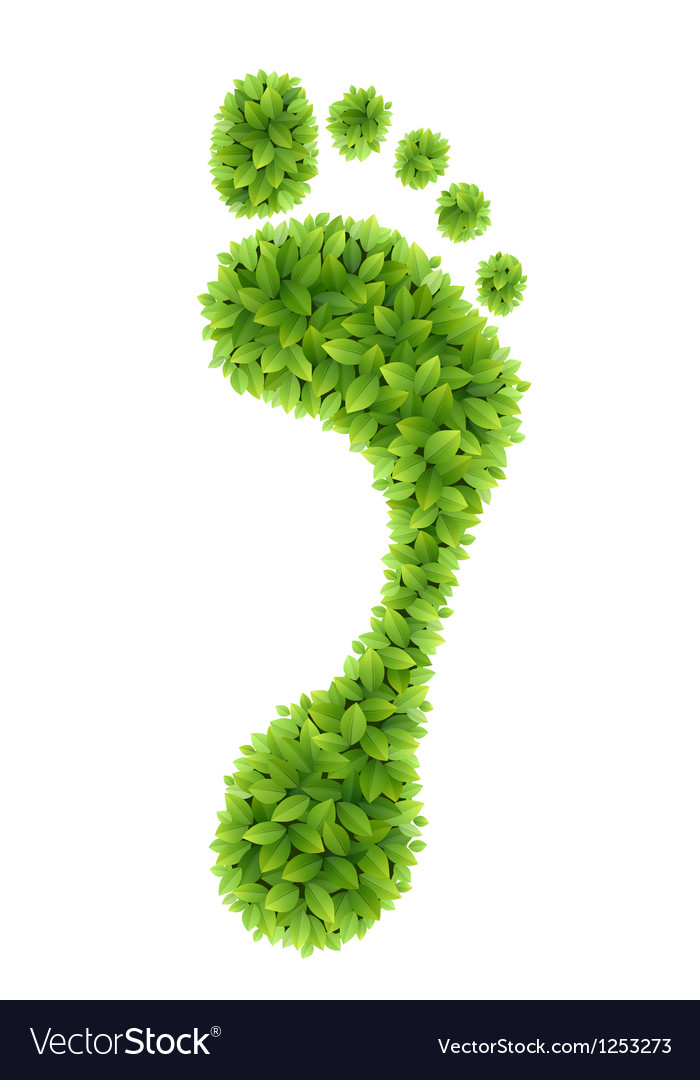 Foliage footprint vector | Price: 1 Credit (USD $1)