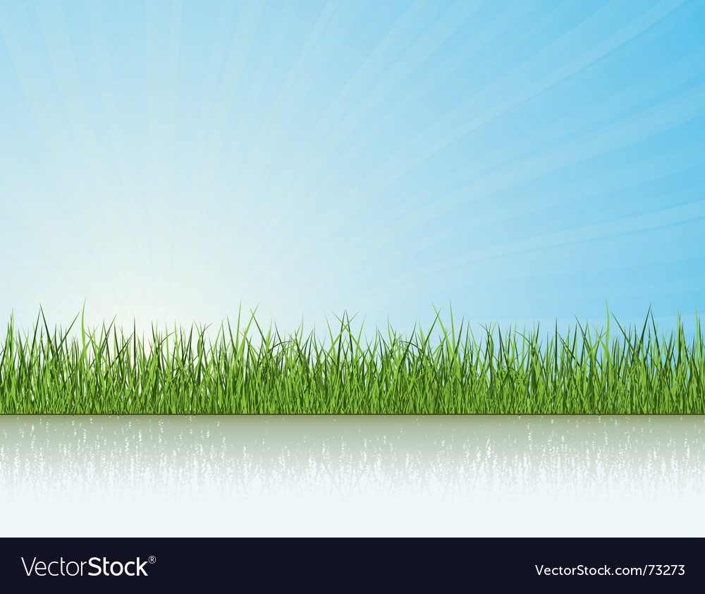 Grass under the sunlight vector