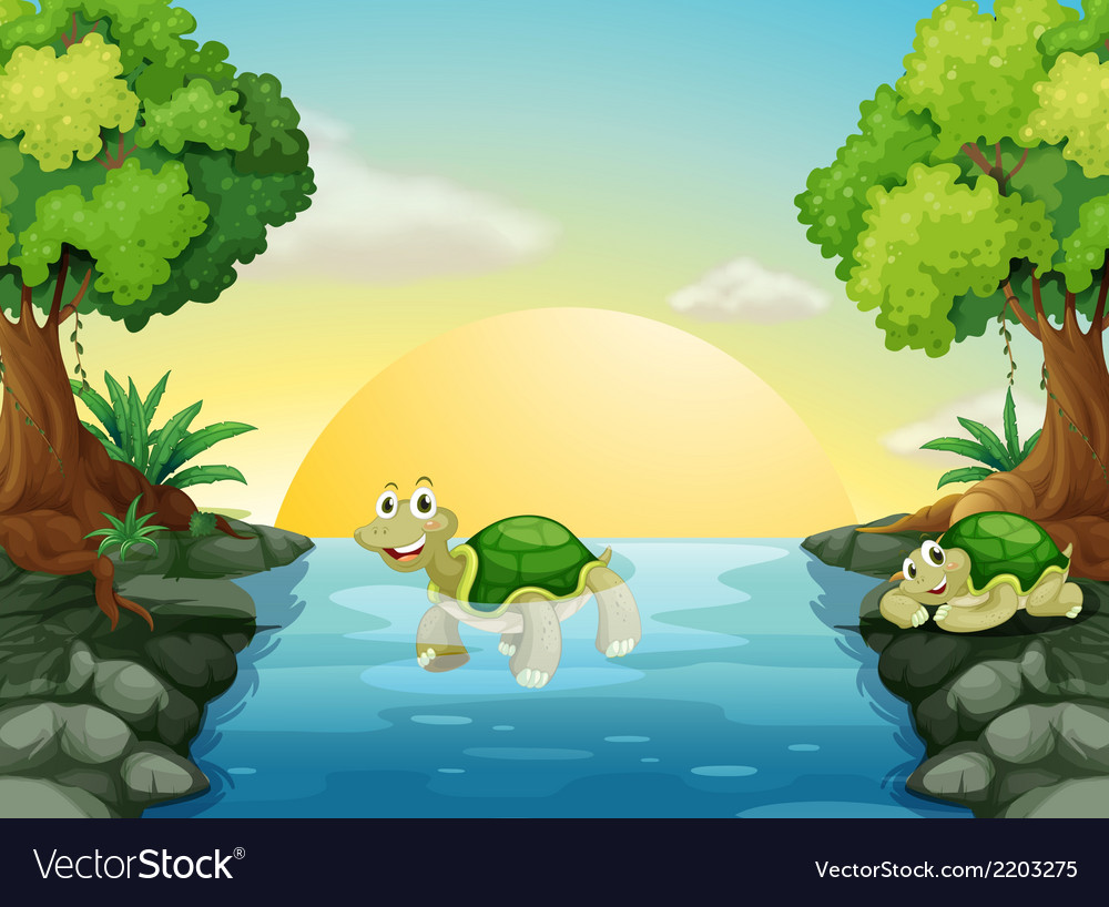 A smiling turtle at the river vector | Price: 3 Credit (USD $3)