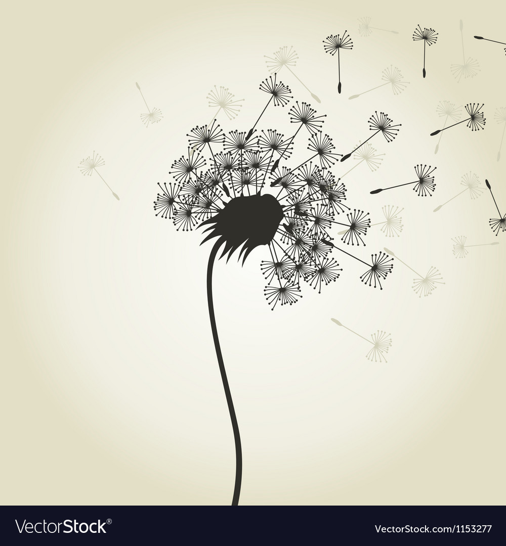 Flower a dandelion2 vector | Price: 1 Credit (USD $1)