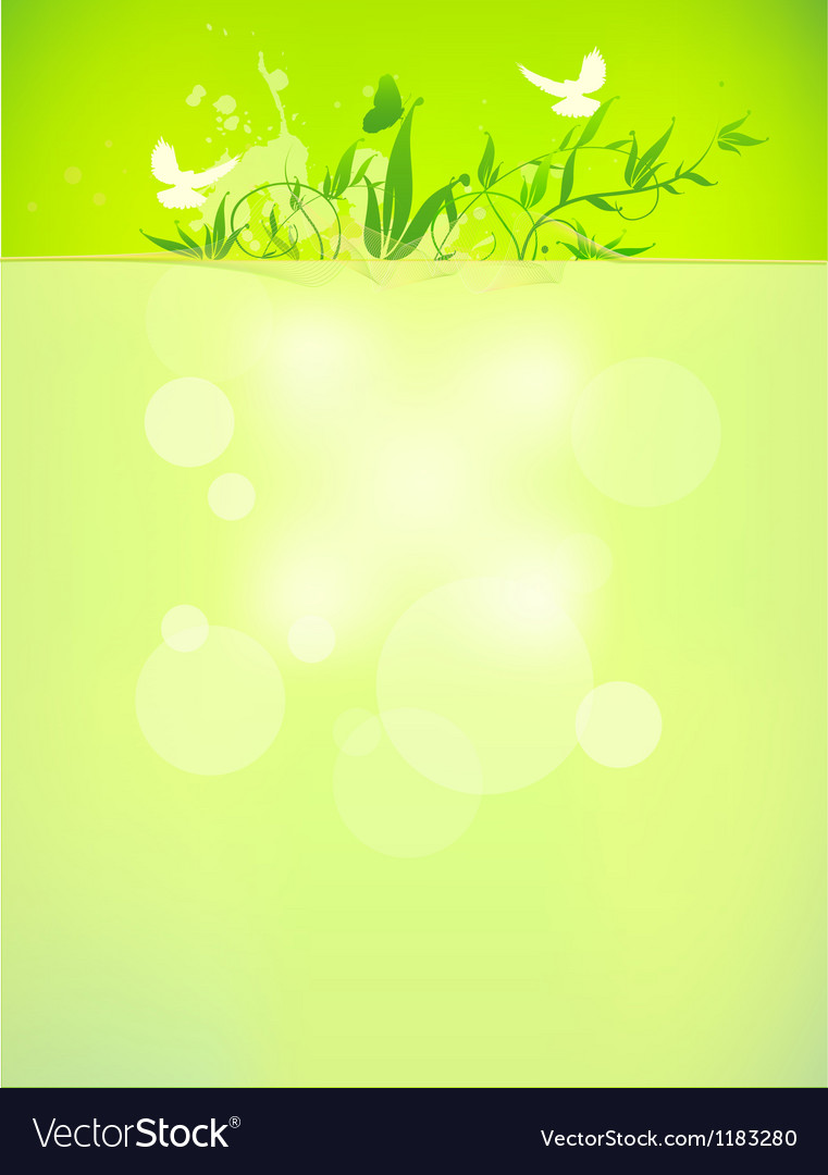 Bio concept design eco friendly for summer floral vector | Price: 1 Credit (USD $1)