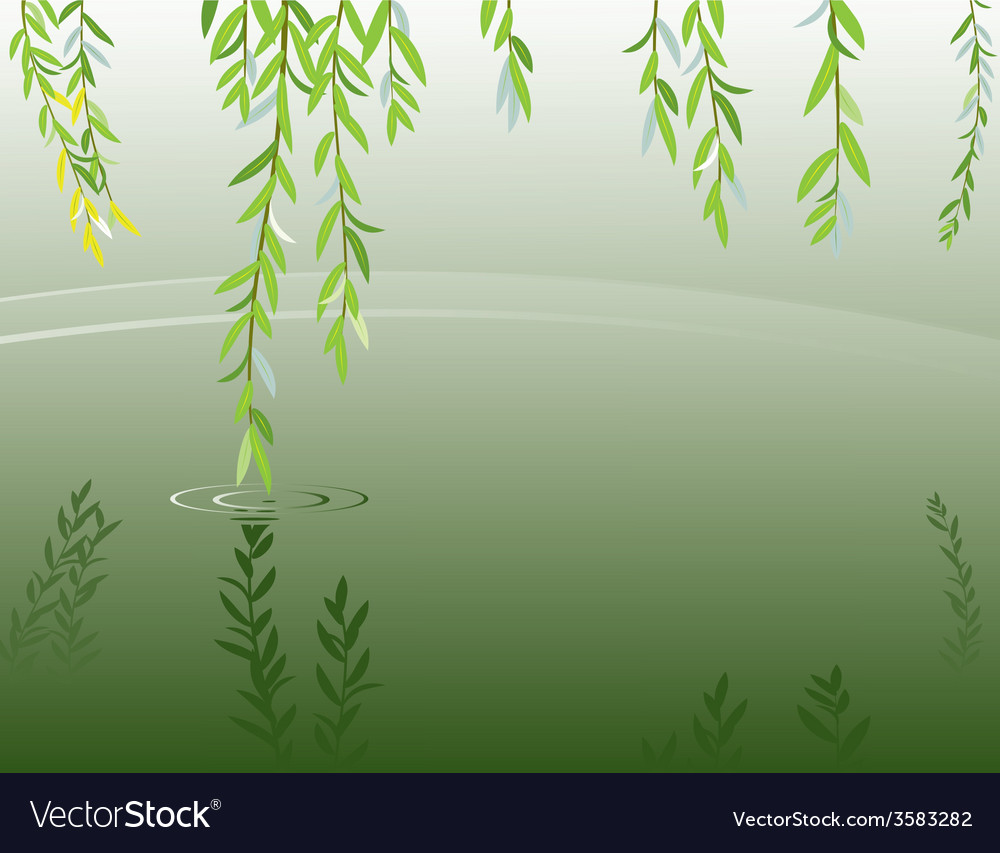 Willow vector | Price: 1 Credit (USD $1)