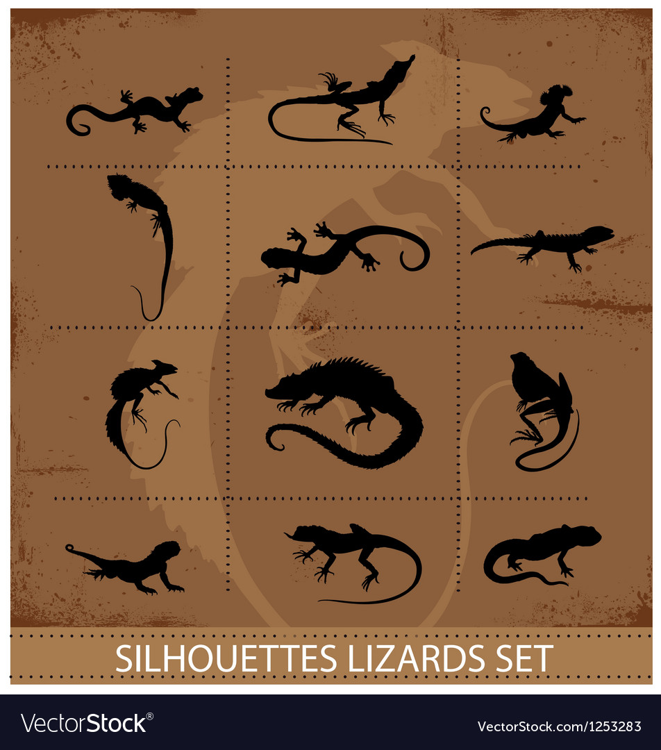 Collection reptiles and amphibians symbols set vector | Price: 1 Credit (USD $1)