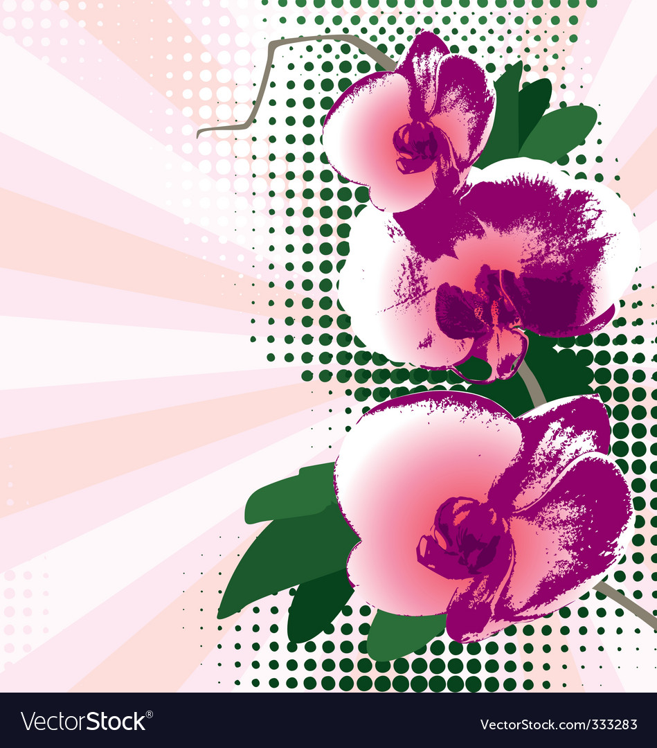 Orchid background vector | Price: 1 Credit (USD $1)
