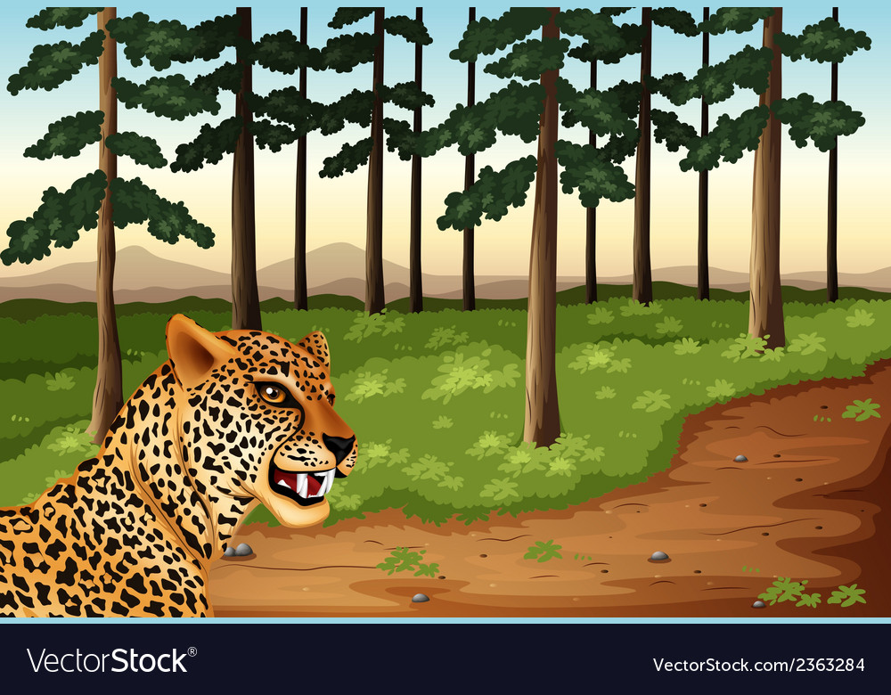 A leopard at the forest vector | Price: 3 Credit (USD $3)