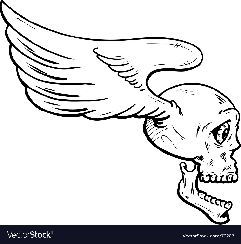 Flying skull with wings illustration vector | Price: 1 Credit (USD $1)