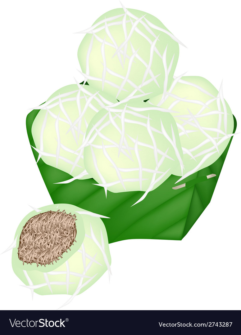 Thai stuffed coconut ball in counts banana leaf vector | Price: 1 Credit (USD $1)