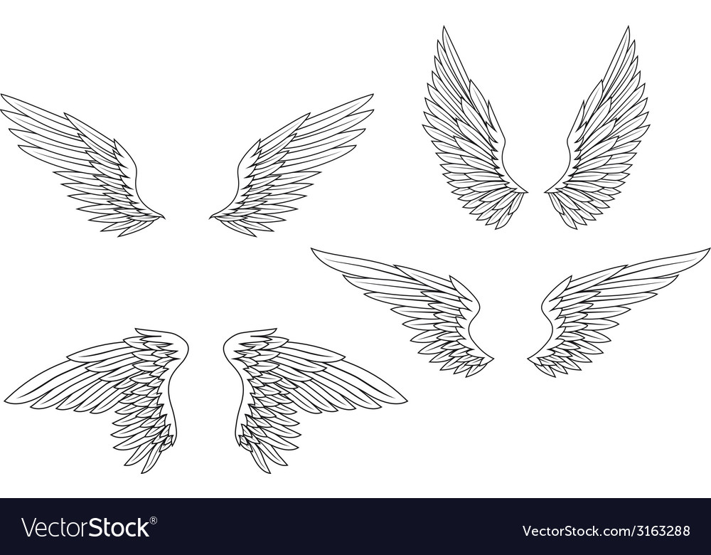 Set of heraldic wings vector | Price: 1 Credit (USD $1)