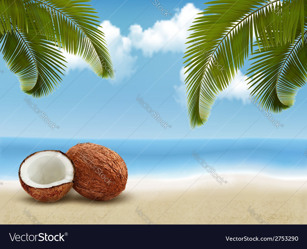 Coconut with palm leaves summer vacation vector | Price: 1 Credit (USD $1)